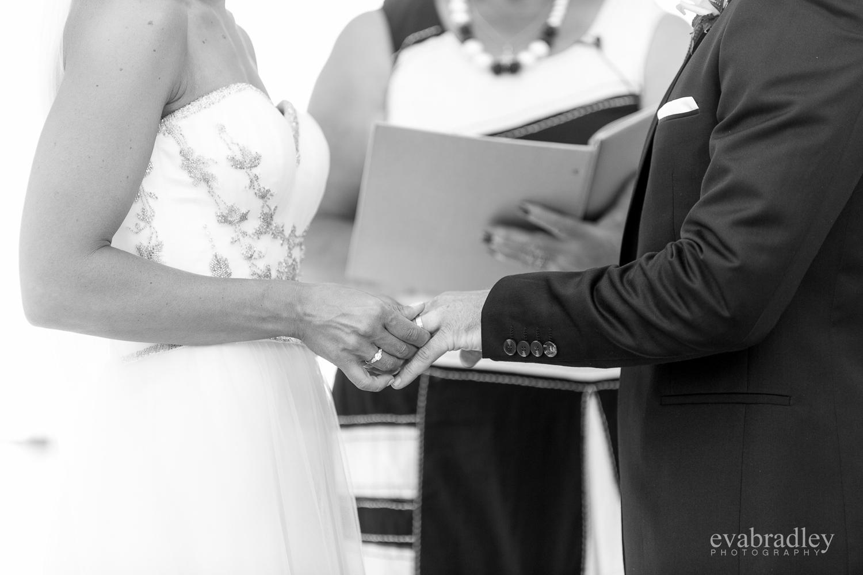 wedding-photographers-napier-nz