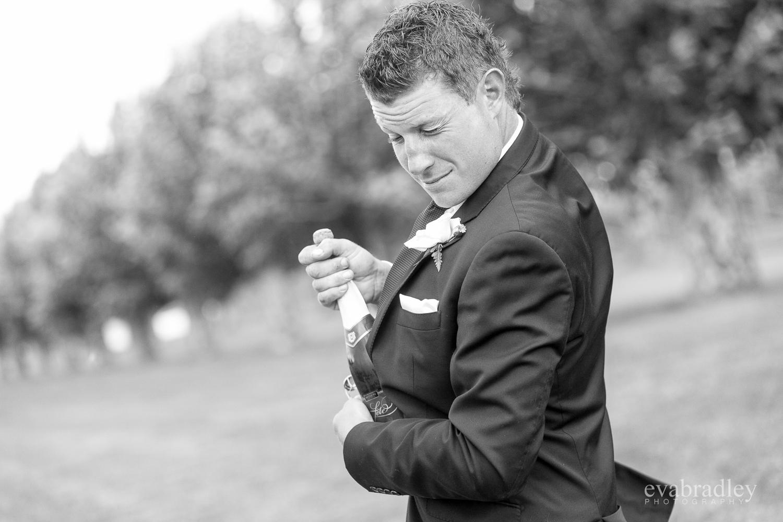 weddings-hawkes-bay