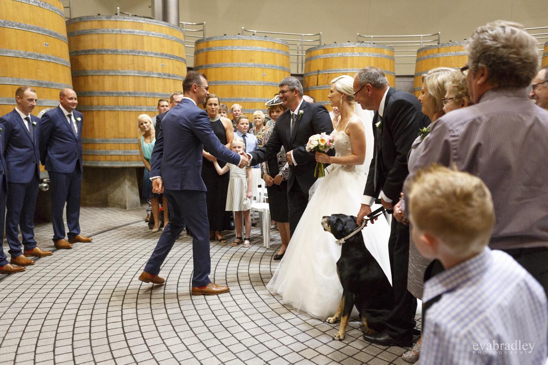 wedding in sophia room craggy range