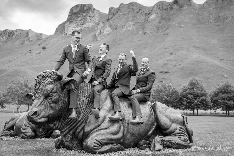 craggy range bulls wedding