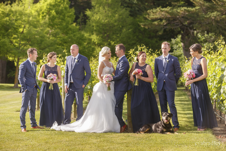 weddings hawkes bay