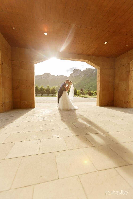 best wedding photos nz