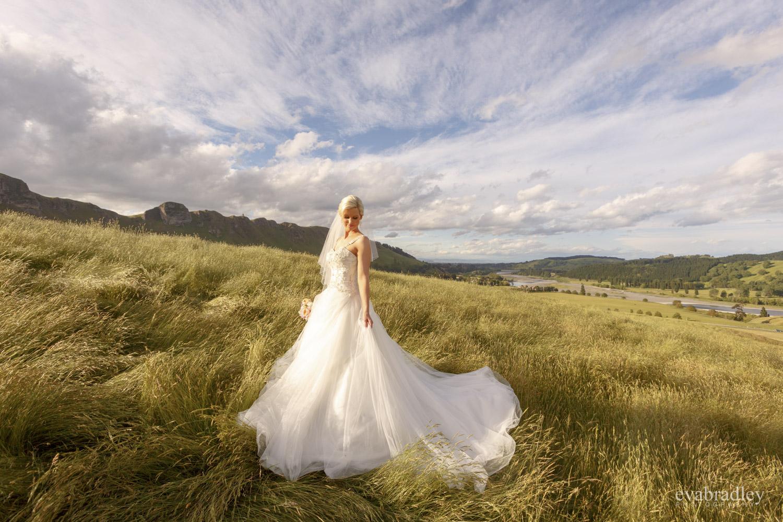 te mata peak wedding photos