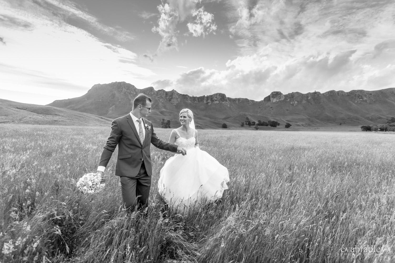 wedding photos on te mata peak hawkes bay