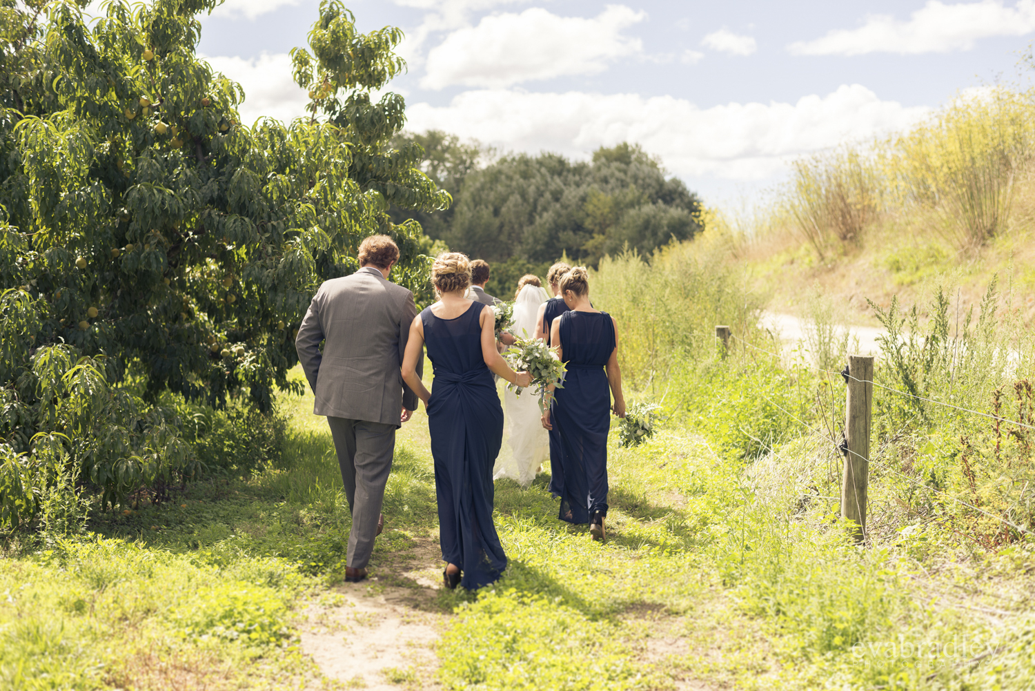 top-new-zealand-wedding-photographers