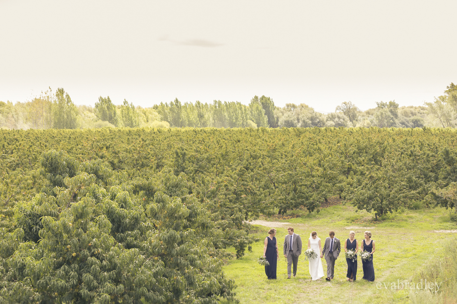 best-wedding-photographer-hawkes-bay