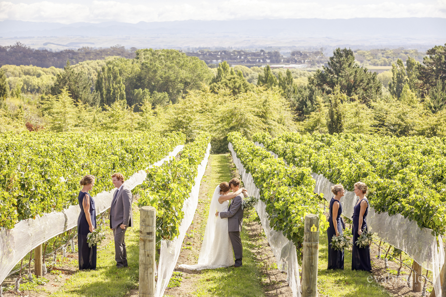 winery-weddings-nz