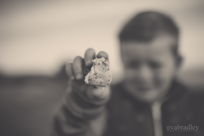 family-photographers-hawkes-bay-nz