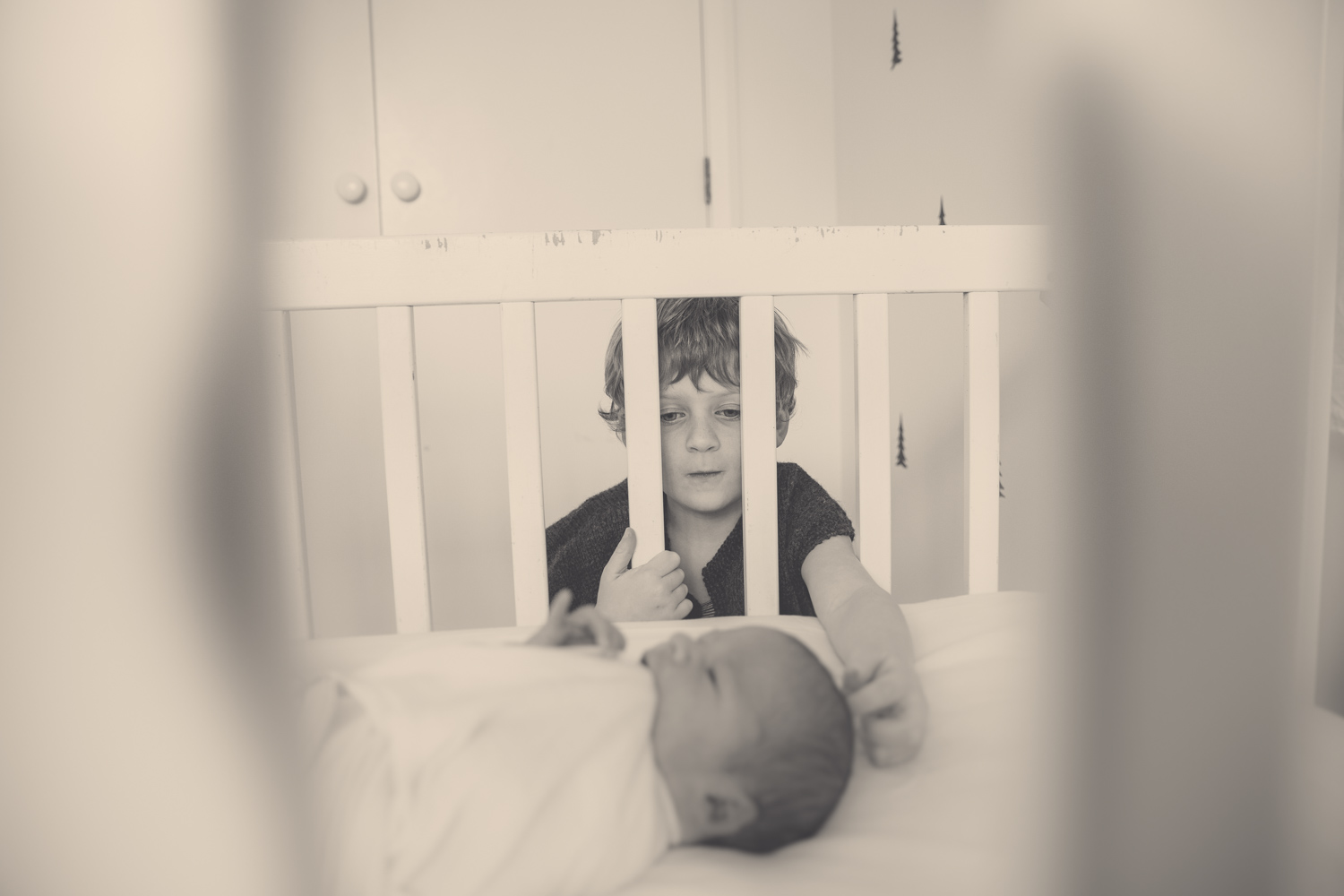 brothers-newborns-eva-bradley