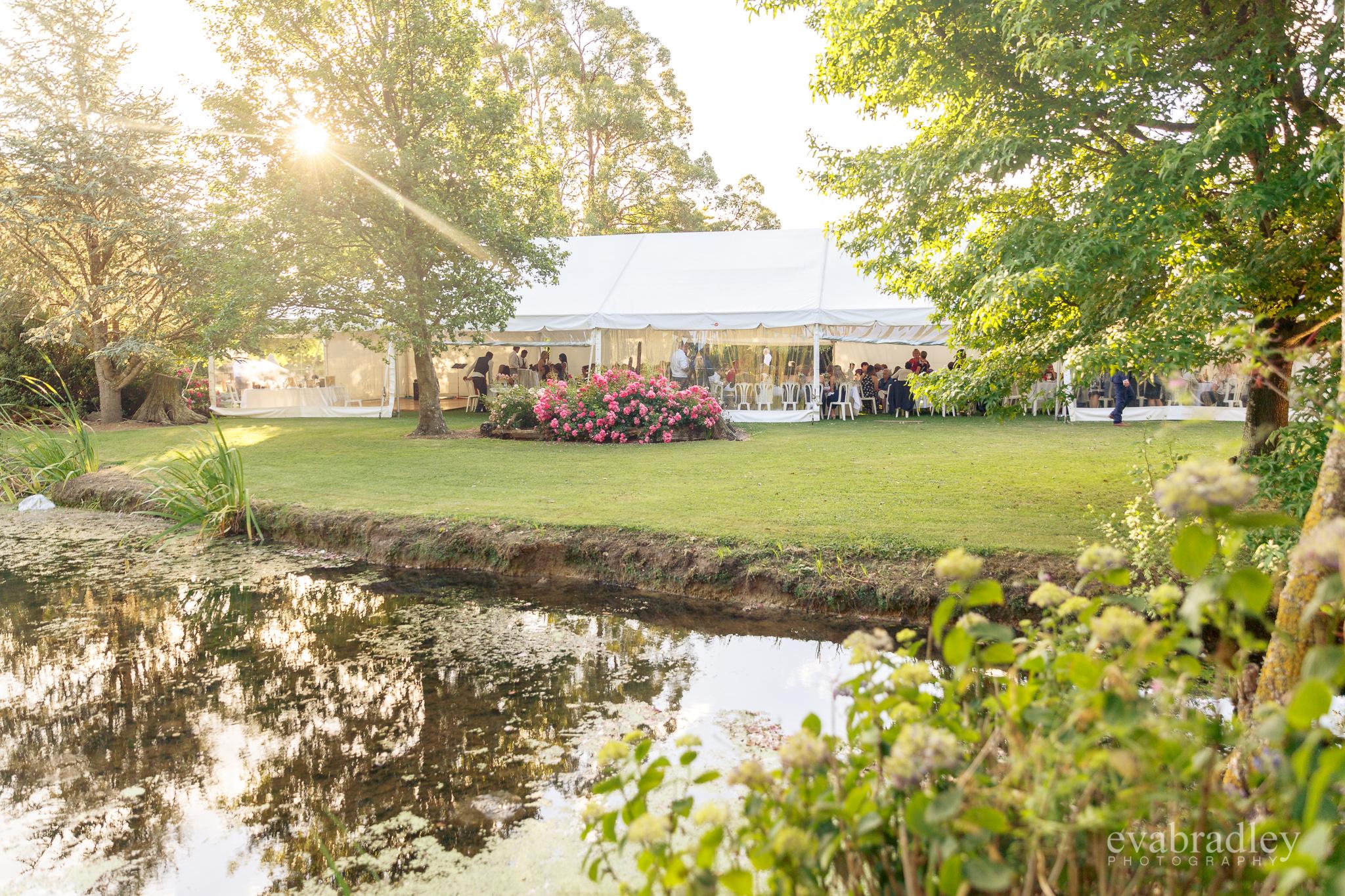 garden-marquee-wedding-new-zealand