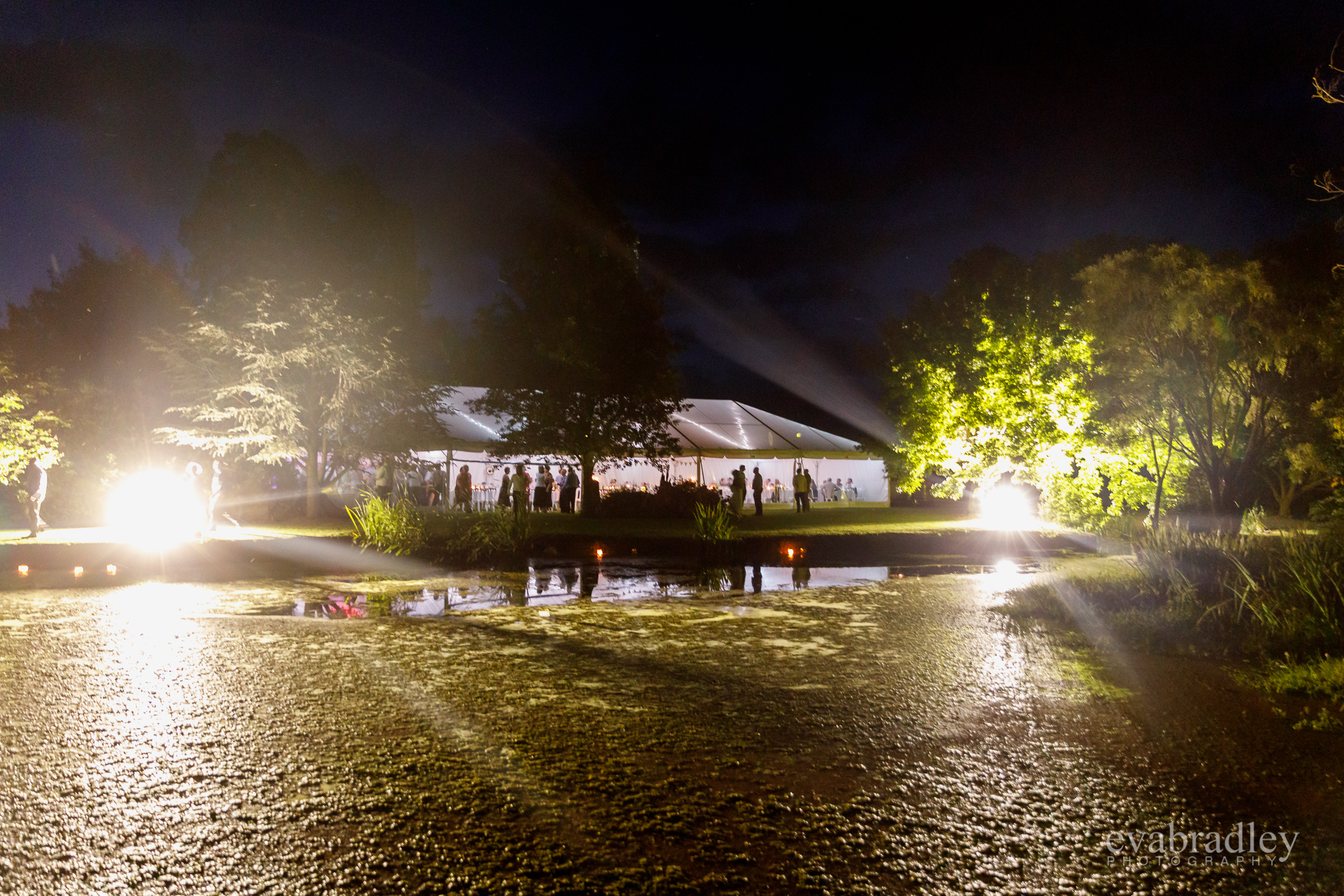 reception-hawkes-bay-wedding