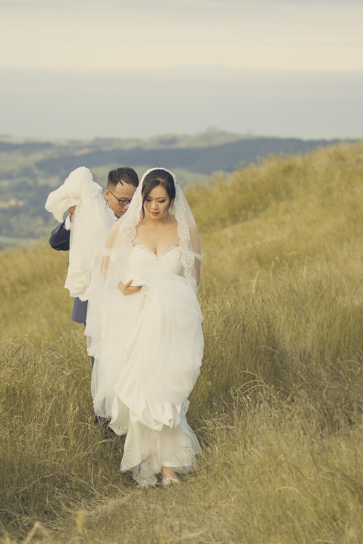 best-hawkes-bay-wedding-photographers-nz