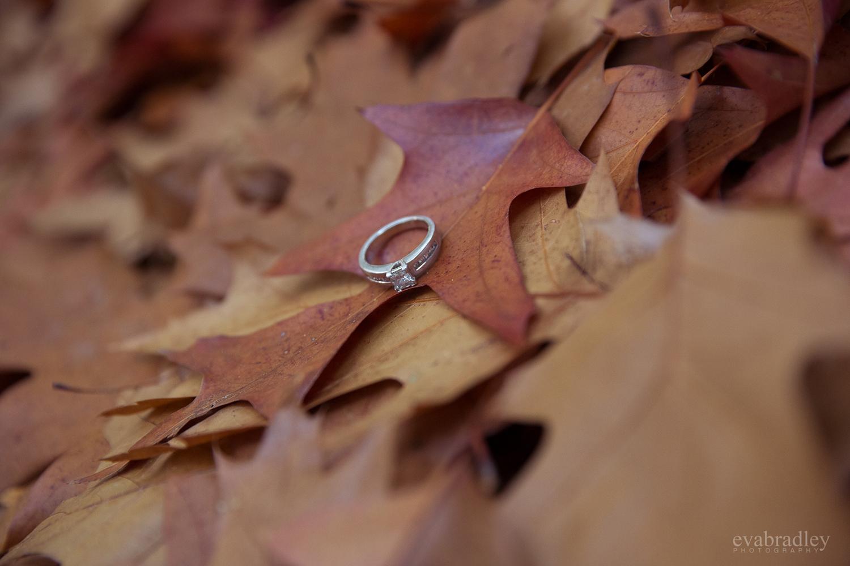 engagement-photography-new-zealand