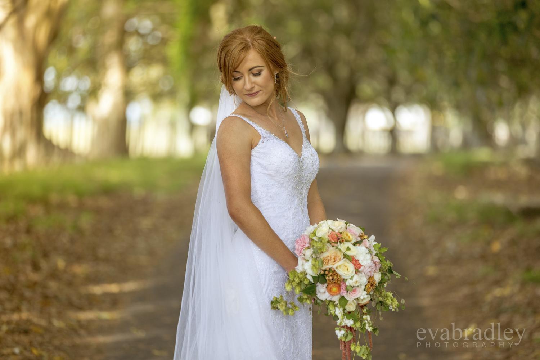 stella york wedding dress nz