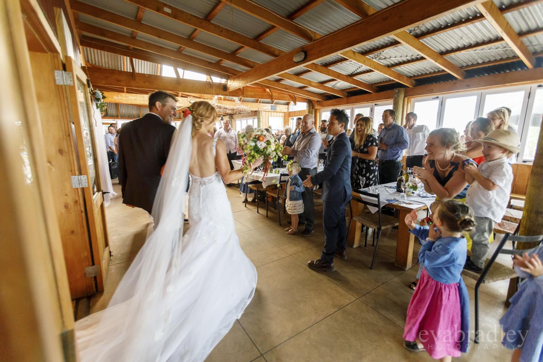 napier weddings at the beach