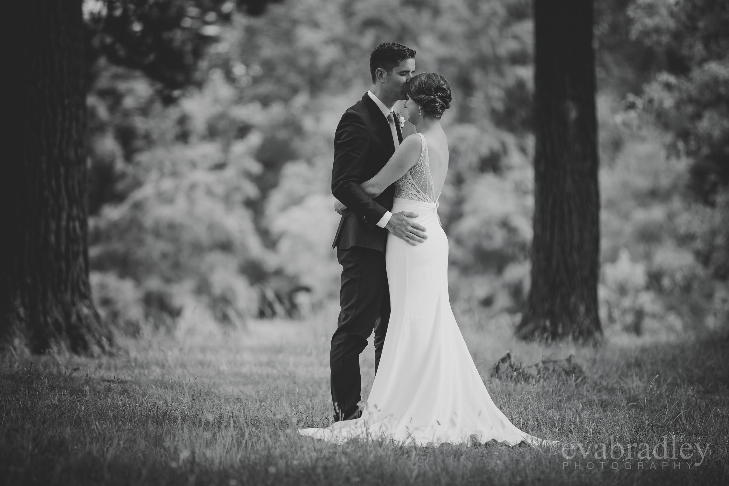 hawkes-bay-weddings-39.jpg