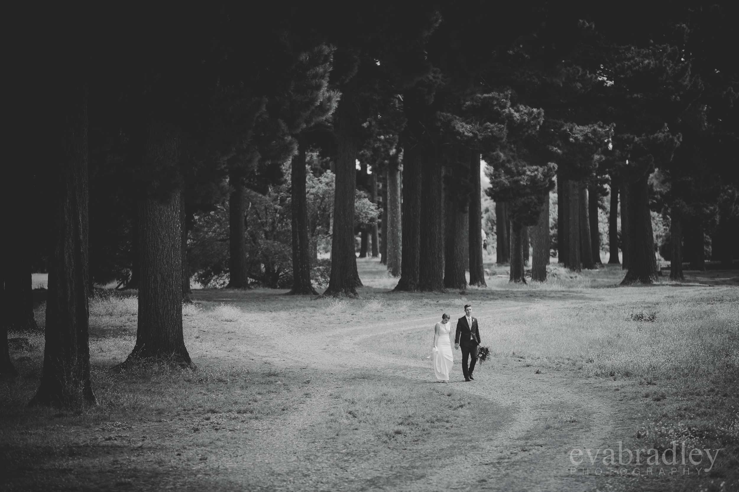 hawkes-bay-weddings-45.jpg
