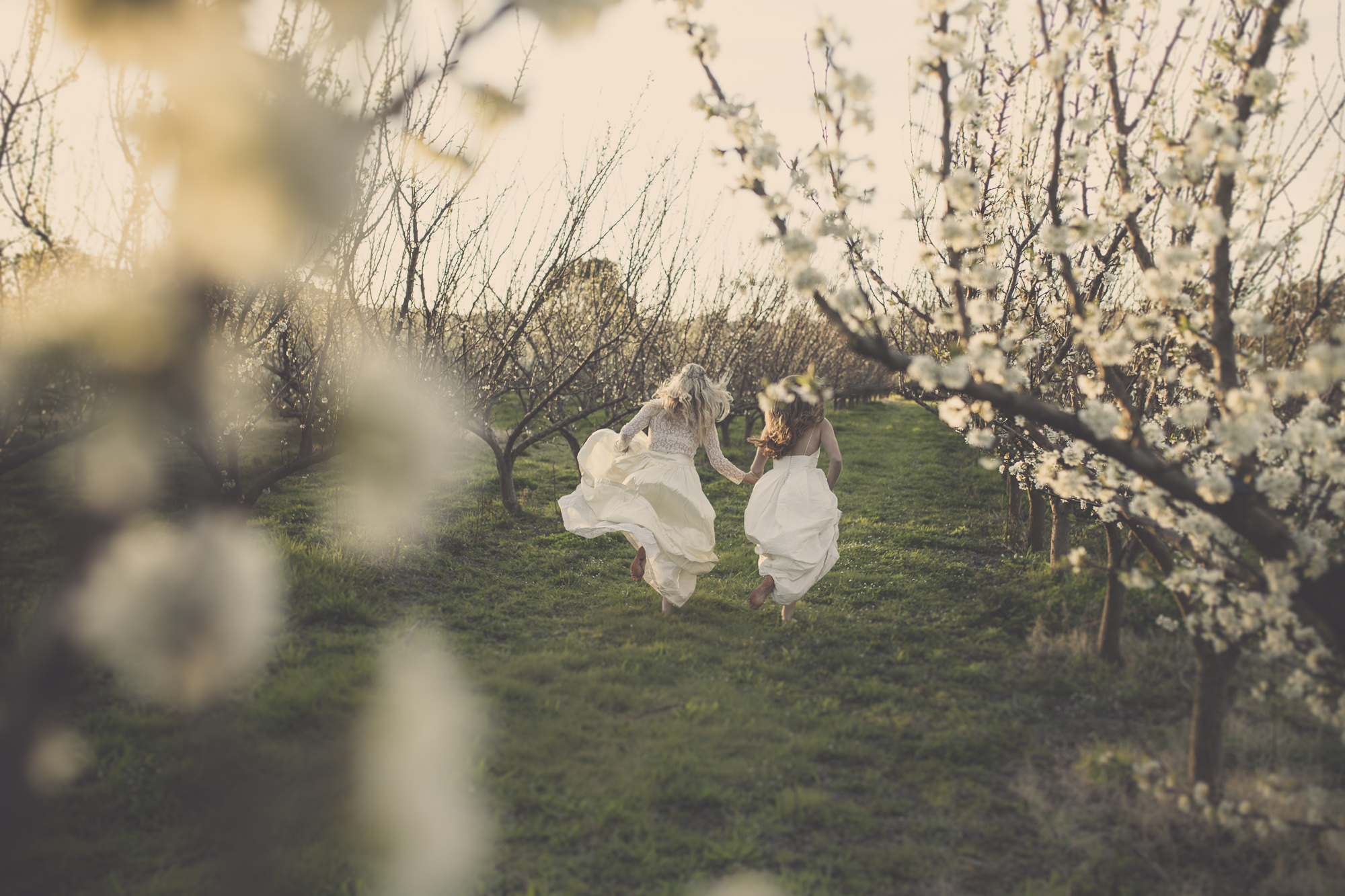 wedding inspiration nz