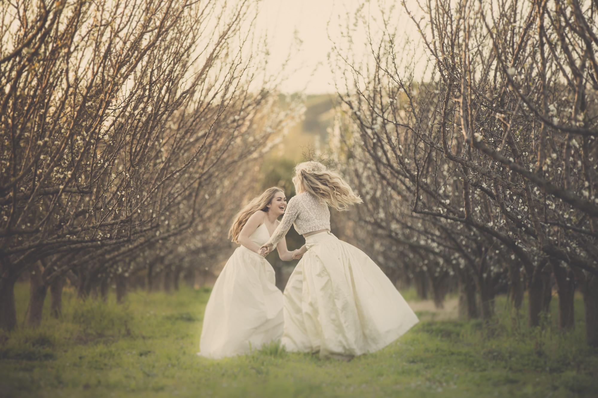 best napier hawkes bay wedding photographers
