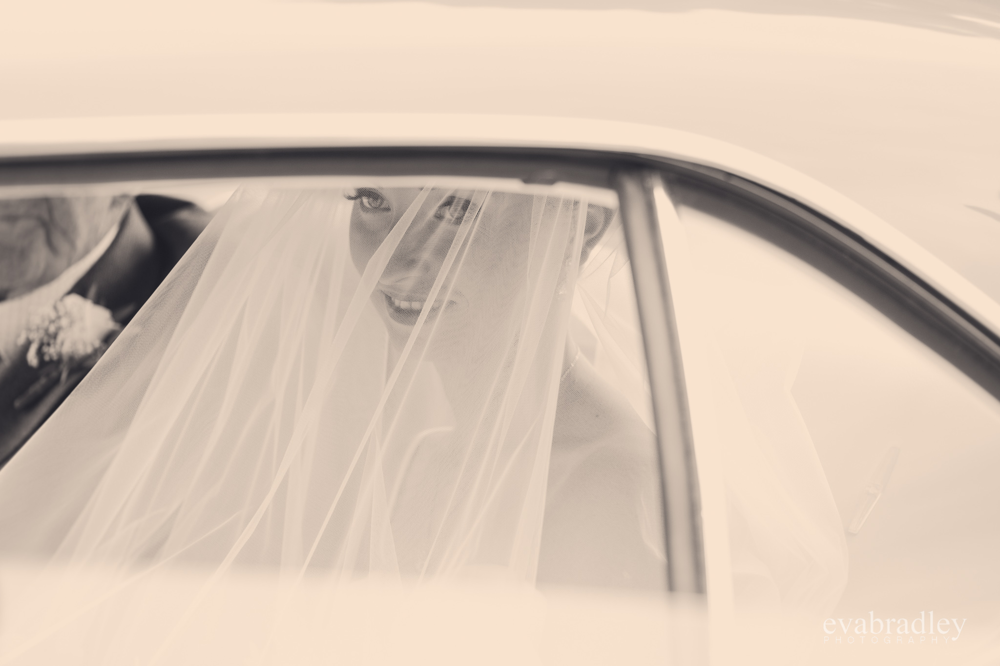 wedding-cars-hawkes-bay