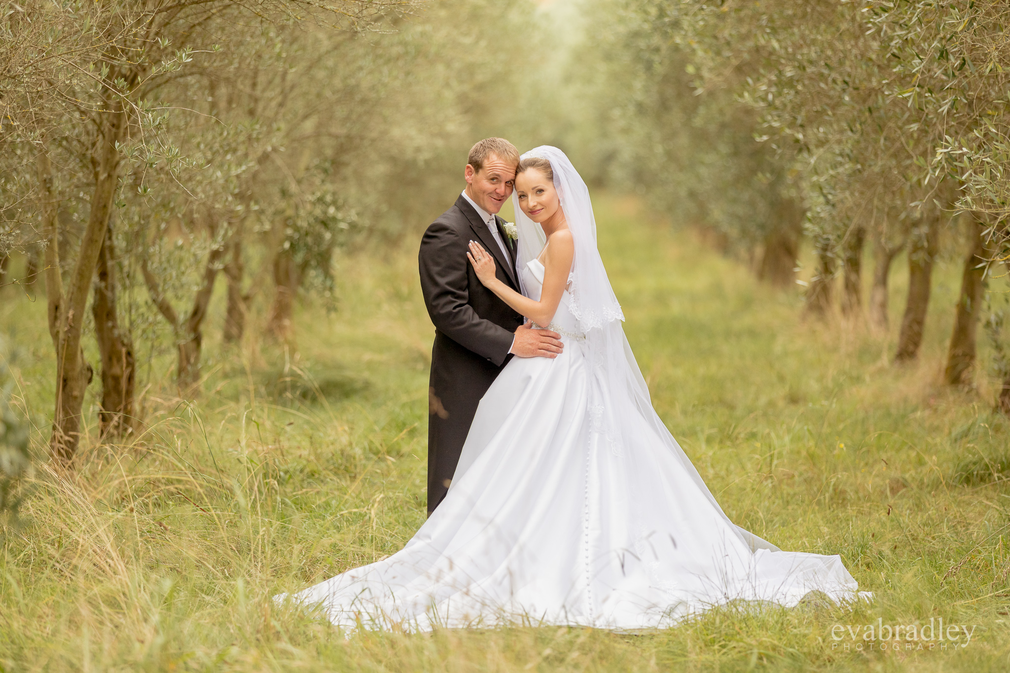 hawkes-bay-photographers-olive-grove