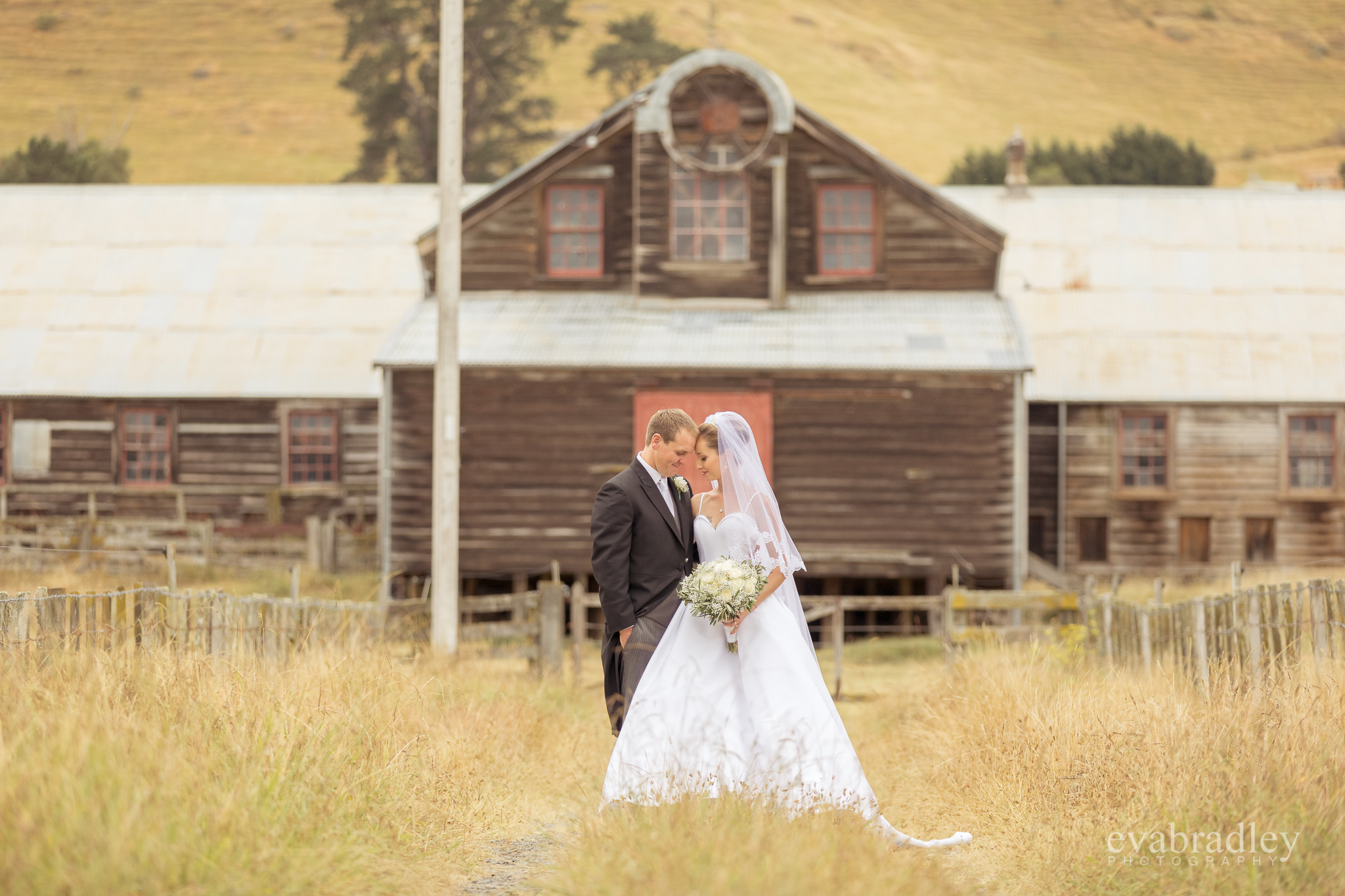 woolshed-weddings-nz