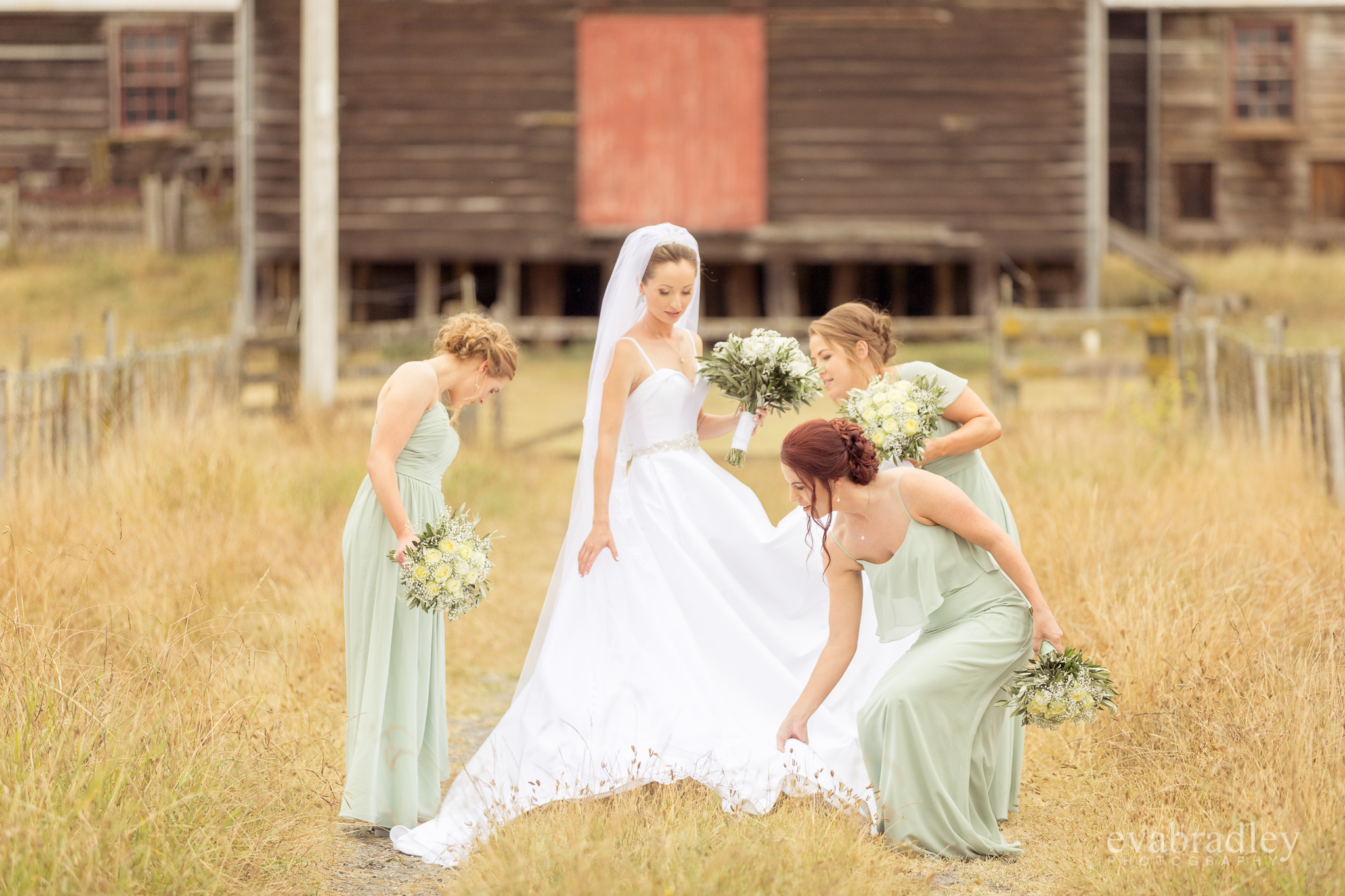 woolshed-weddings-hawkes-bay