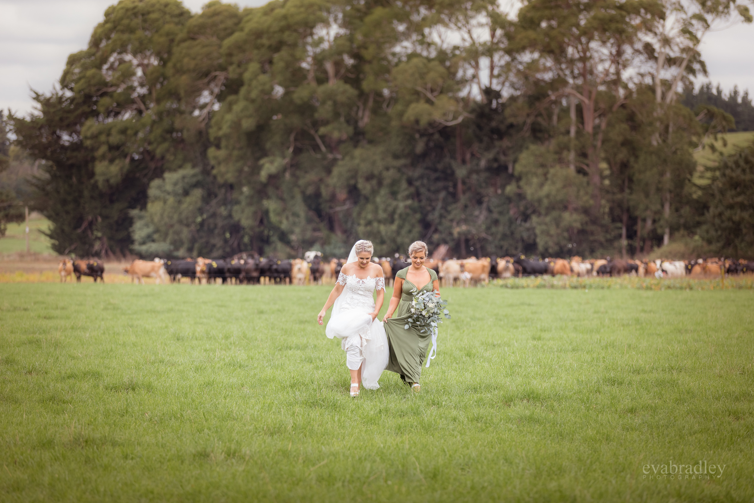 country-weddings-nz-new-zealand