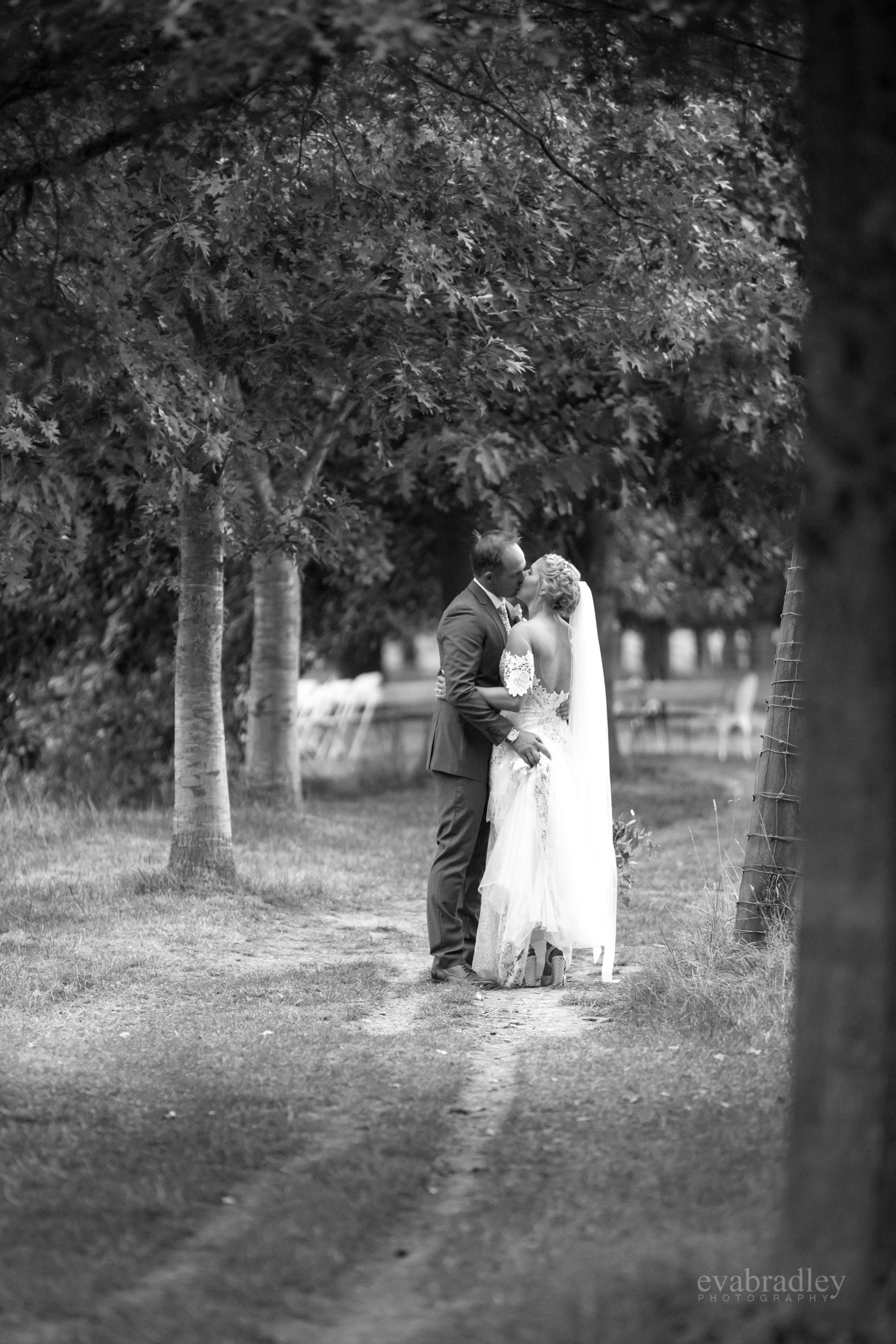 new-zealands-most-beautiful-weddings