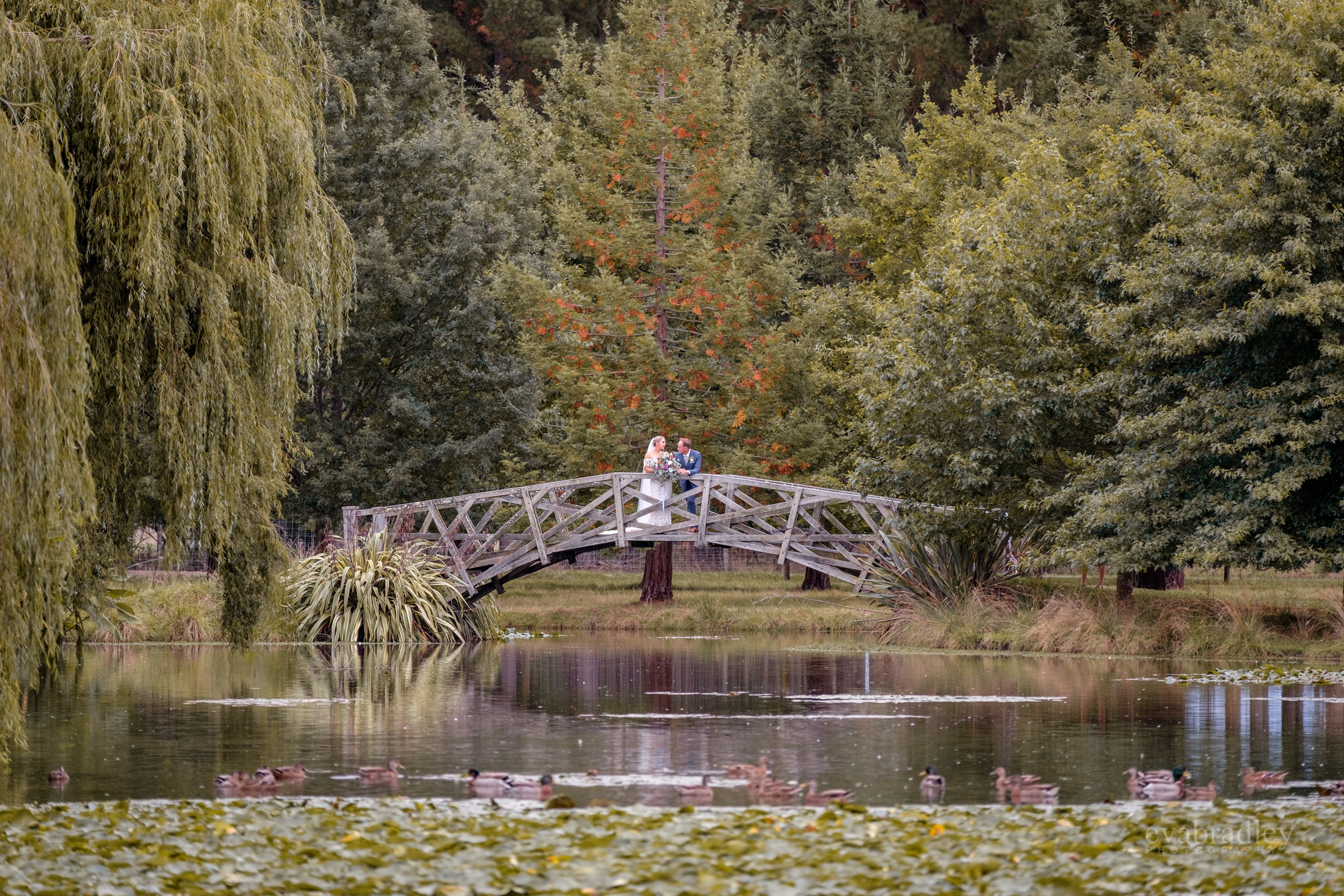 taniwha-gardens-wedding-photography
