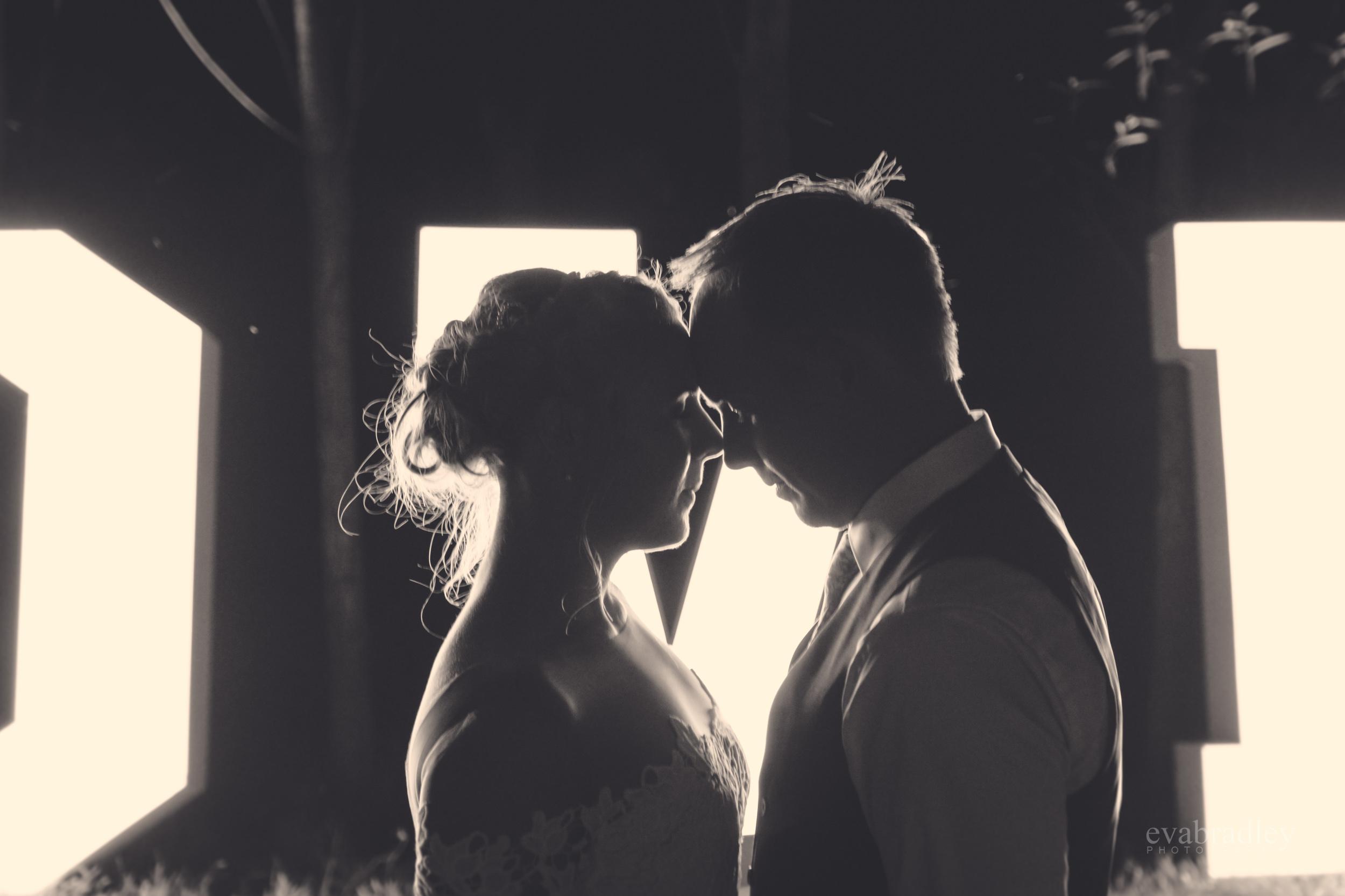 best-wedding-photographers-in-new-zealand