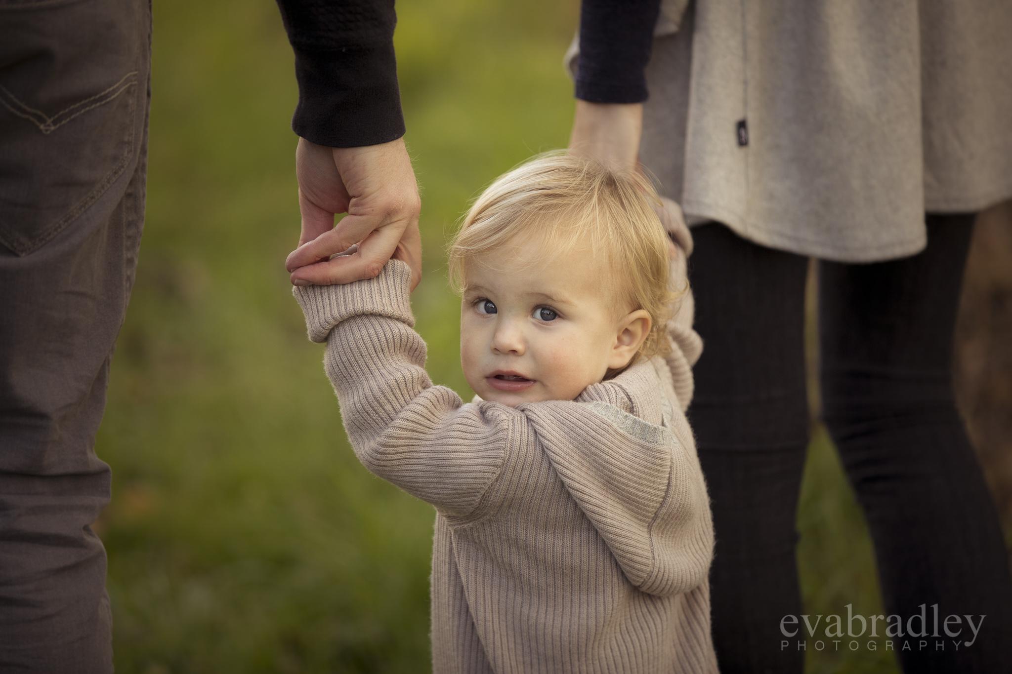napier-newborn-photographers
