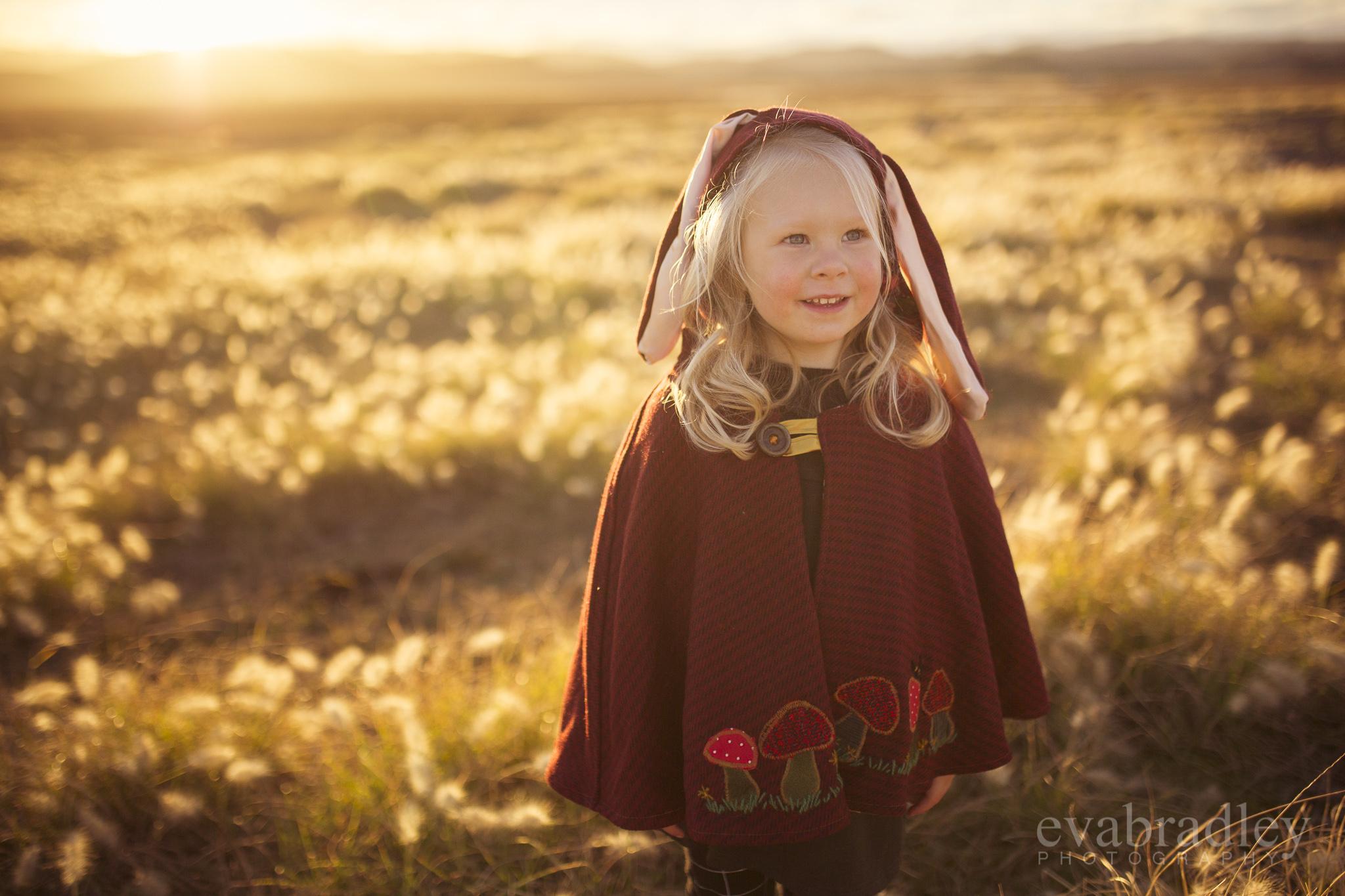 family-portrait-photographers-palmerston-north