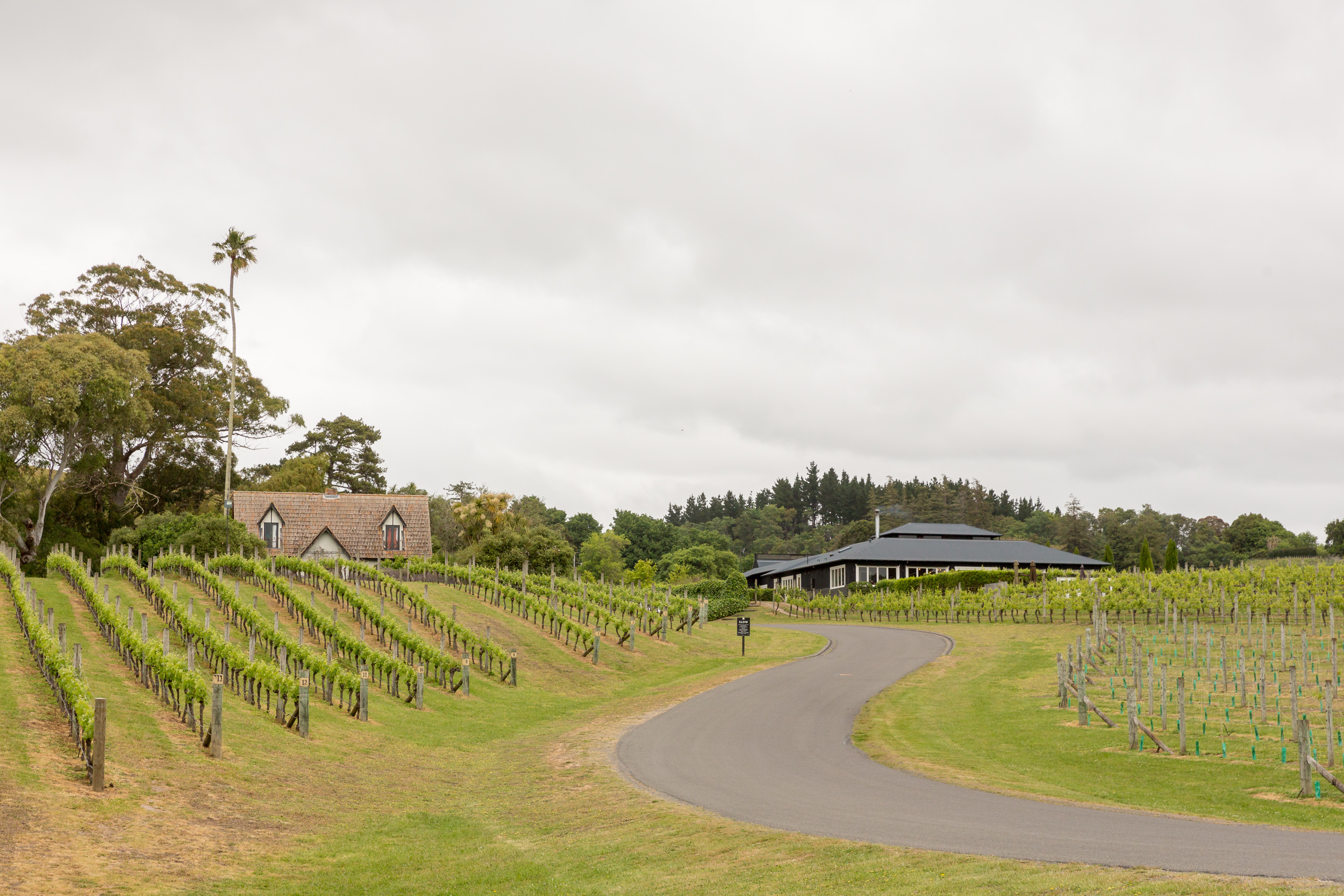 black-barn-winery