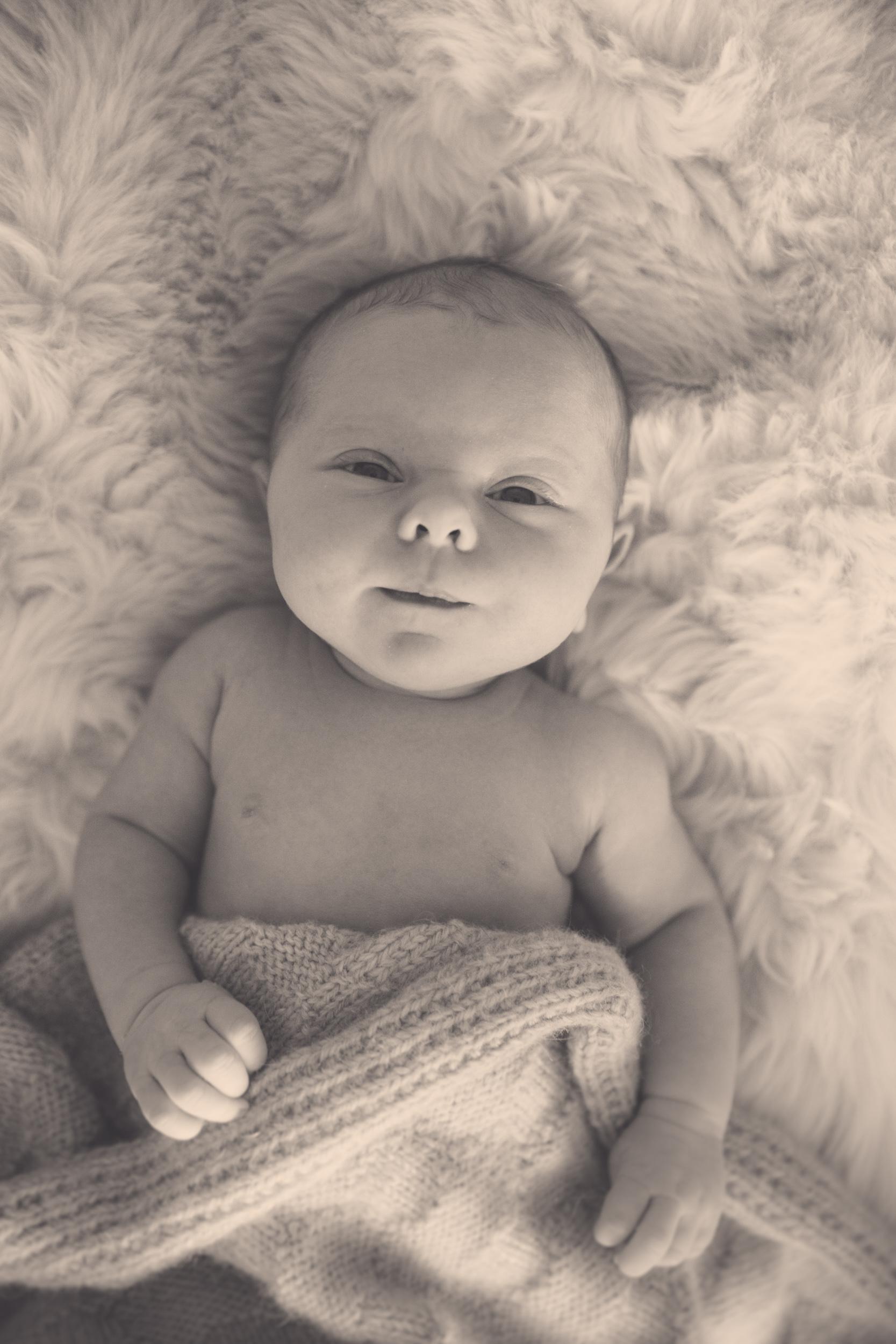 hawkes-bay-maternity-photography