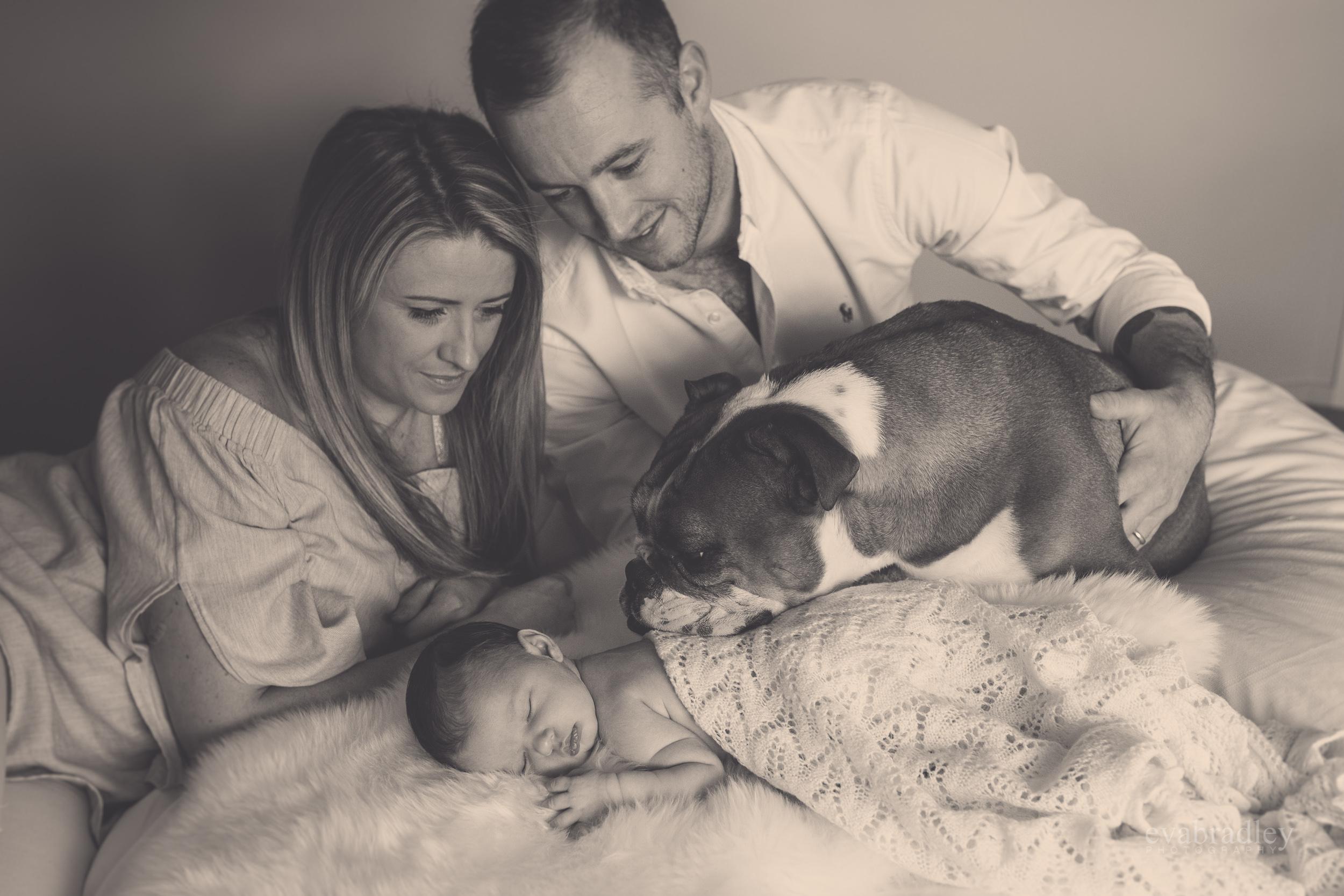 napier-newborn-baby-photographers