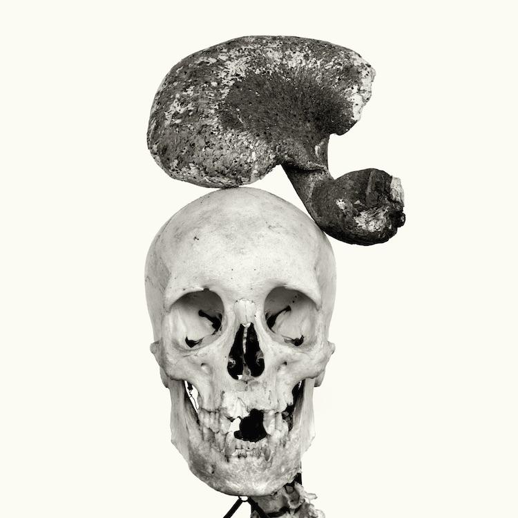 HEADS-18.jpg
