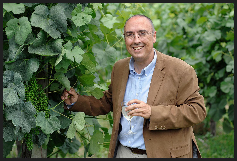 Manuel Pinheiro, promotor da Rota dos Vinhos Verdes, em Arcos de Valdevez.