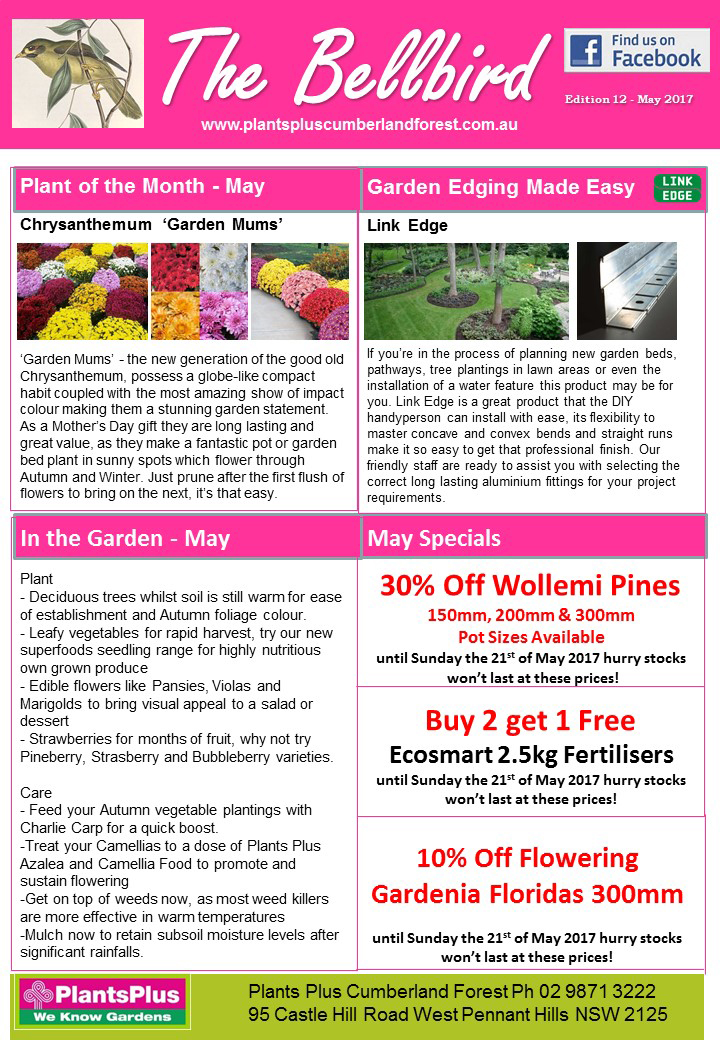 Plants Plus Cumberland Forest Newsletter May