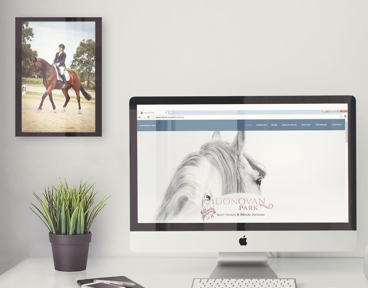 Donovan Park - Sport Horses & Rehab Services