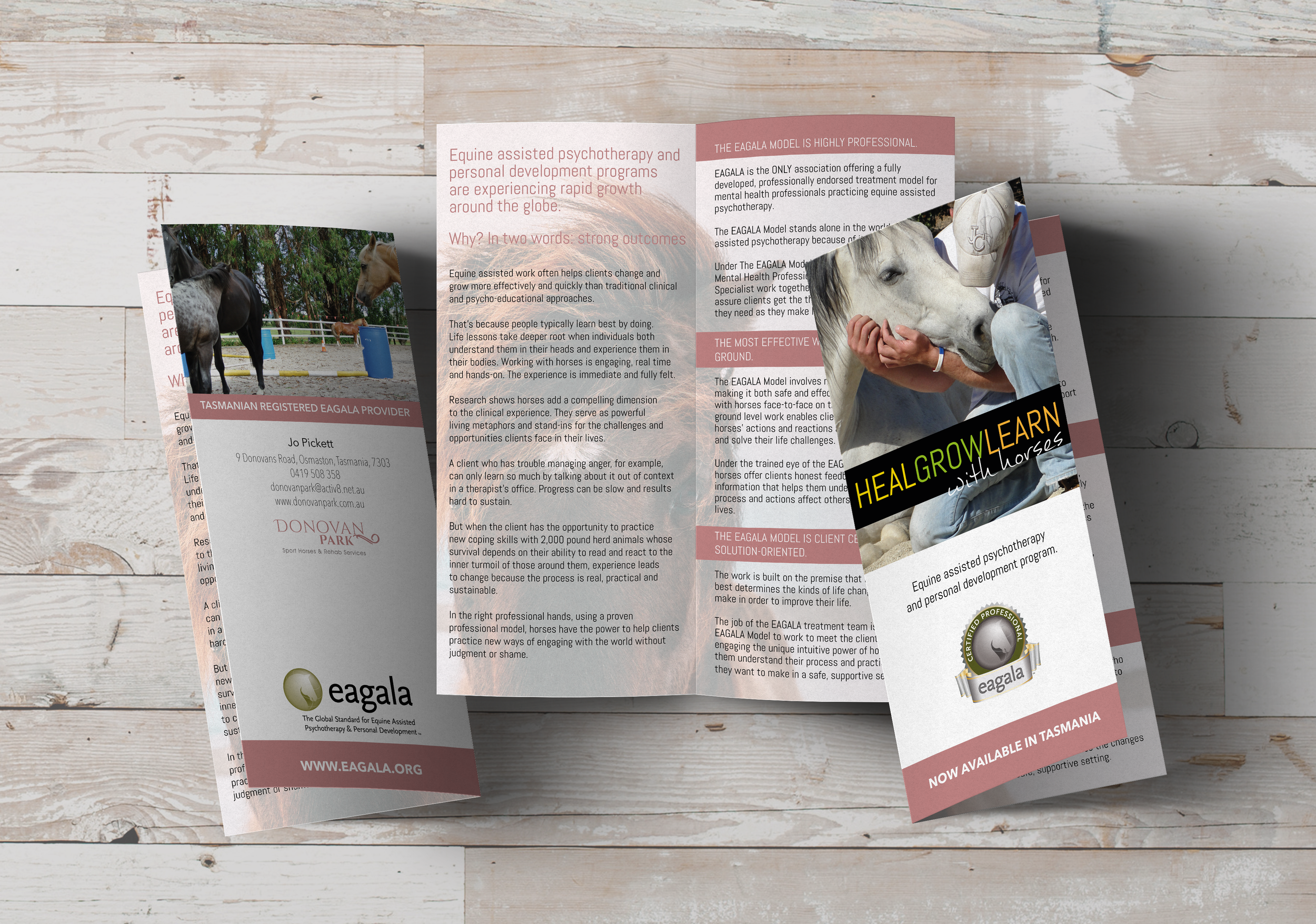Bi Fold DL Brochure