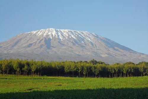kilimanjaroclimb.jpg