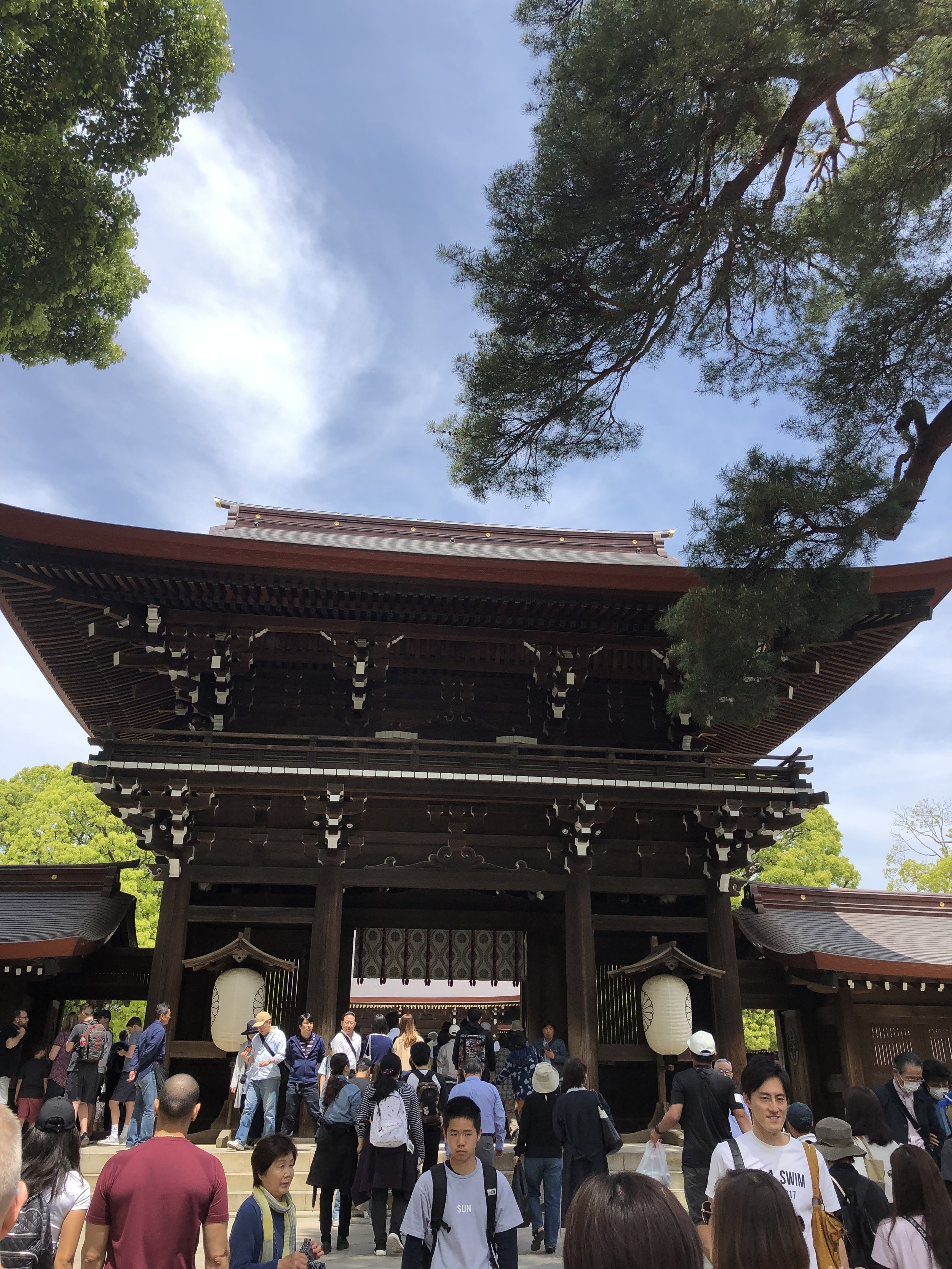 Meiji Shrine - crowds courtesy of coronation of new Emporer