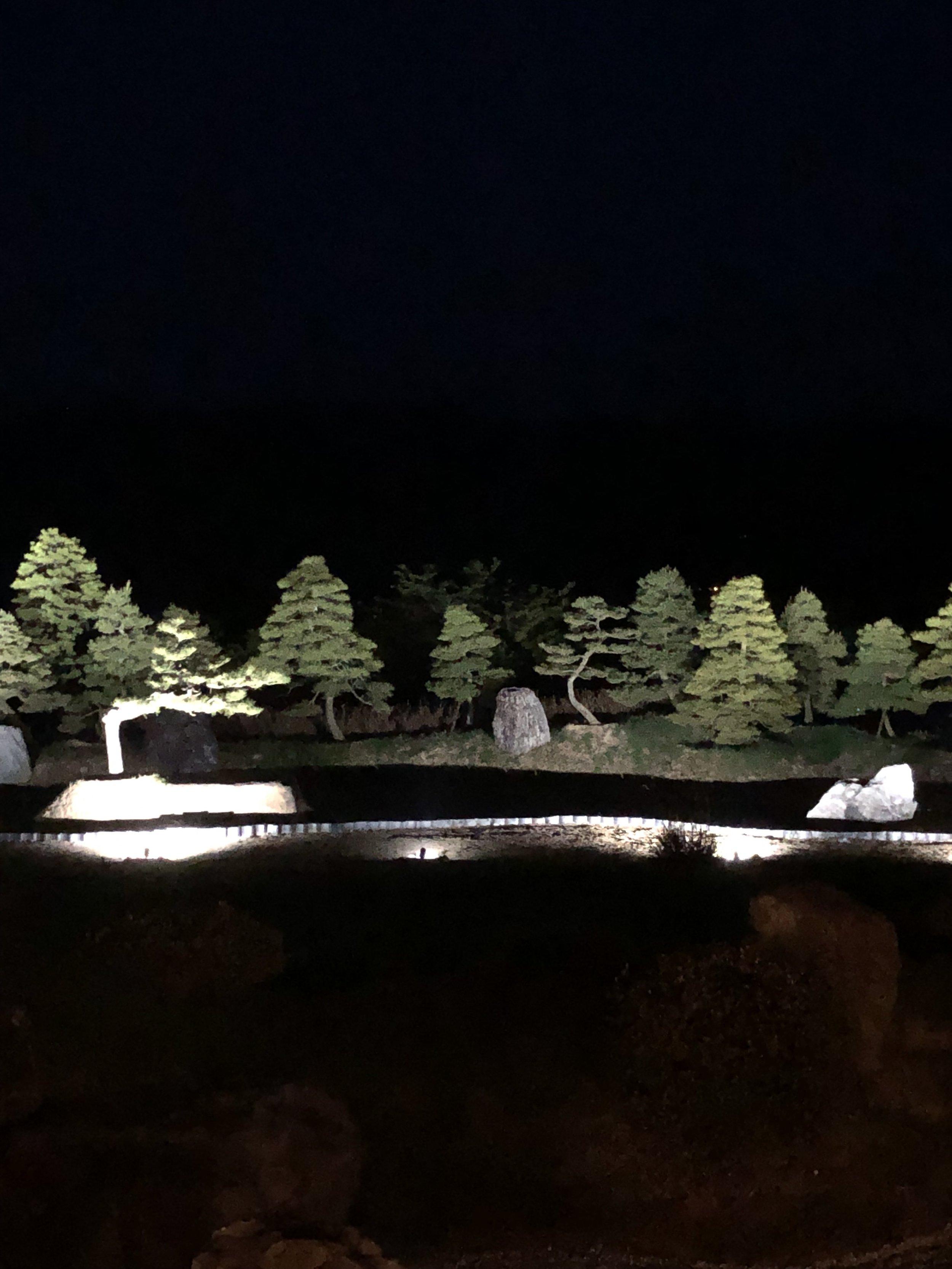 Nighttime view (Sasayuri-an)