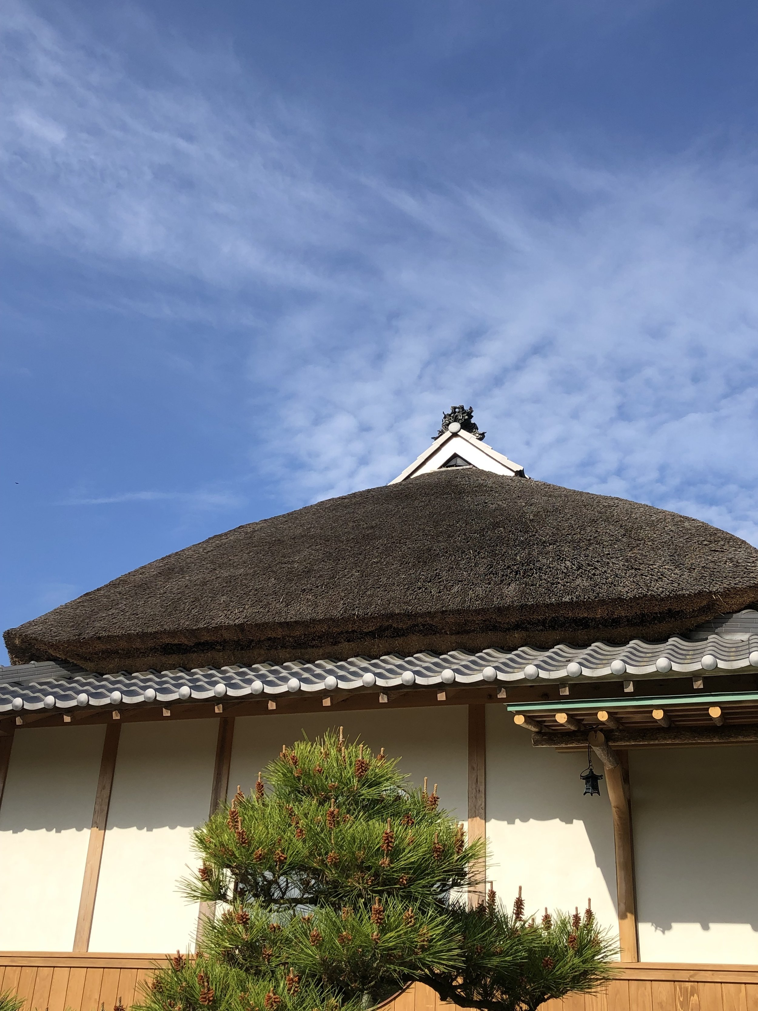 A rare thatched roof (our farmhouse at Sasayuri-an)