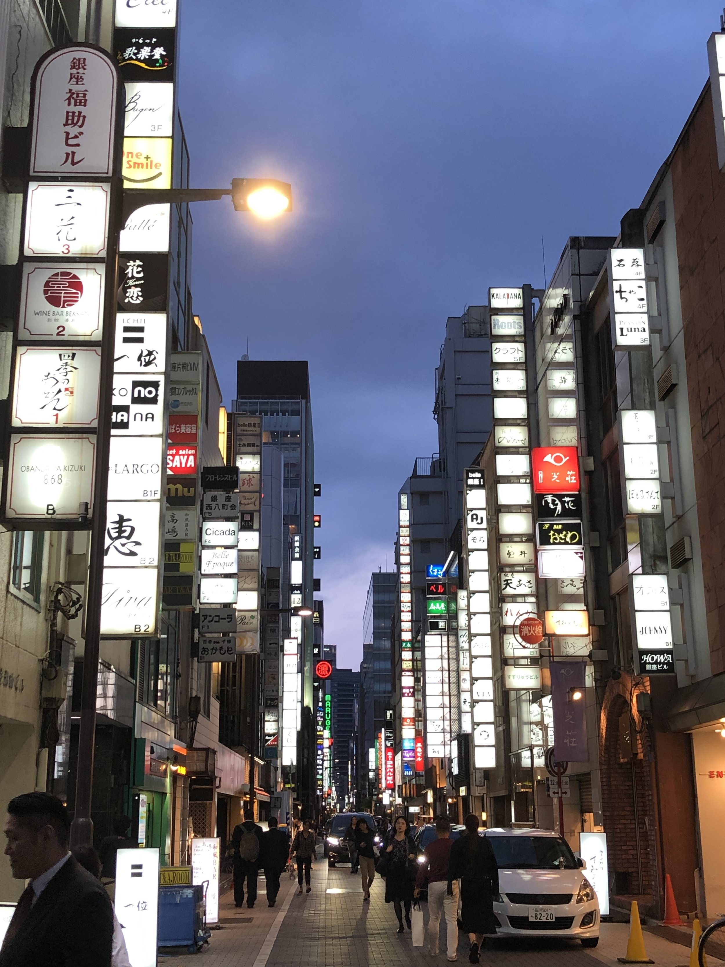 Ginza by Night - so many choices
