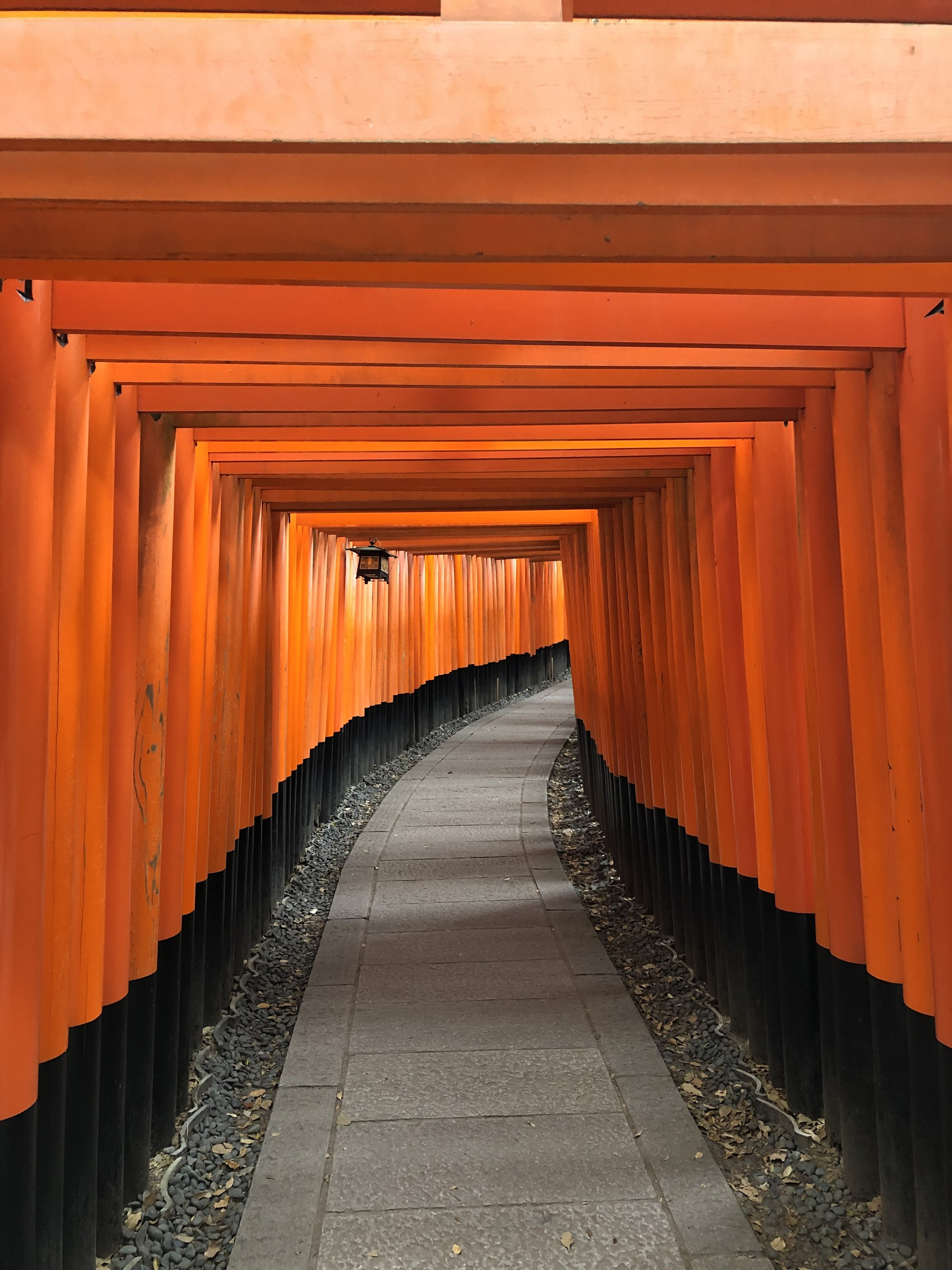 Fushimi Inari Shrine (Kyoto)