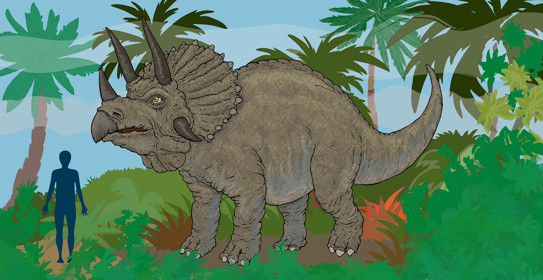 triceratops_flat.png