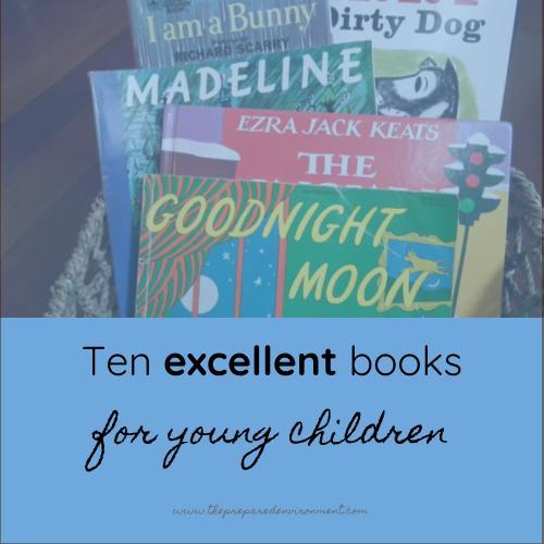 Ten Excellent Books for Young Children.jpg