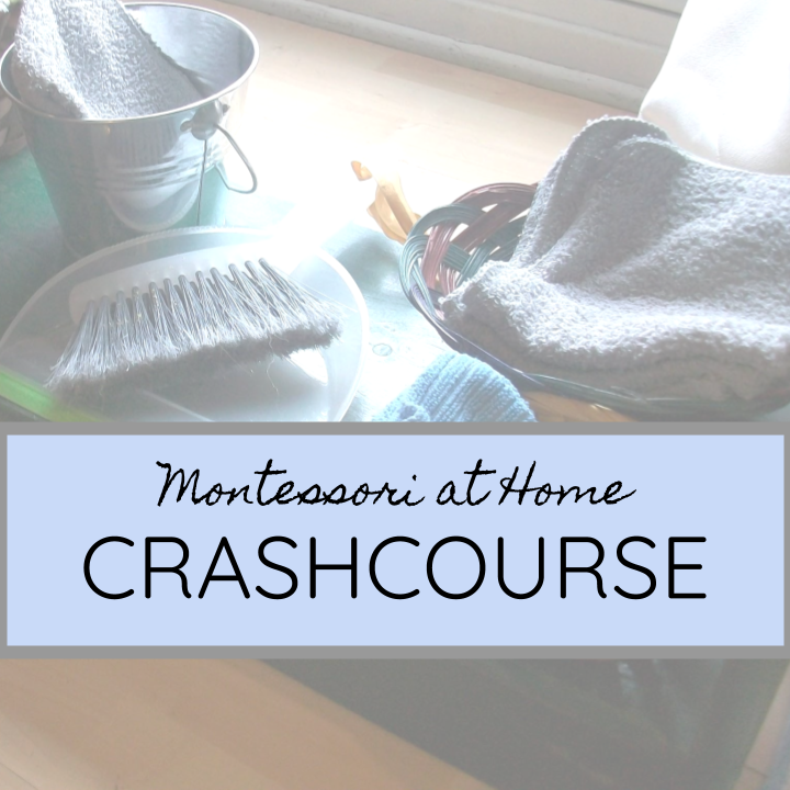Take the free crash course - Learn the three parts of any Montessori Environment, and how you can take the universal principles of Montessori into your own home.